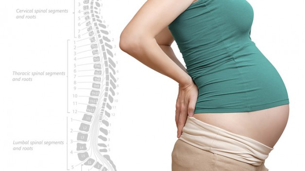 pregnancy spine